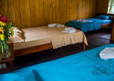 Amazon-Tupana-Aru-U-Nature-Reserve-10