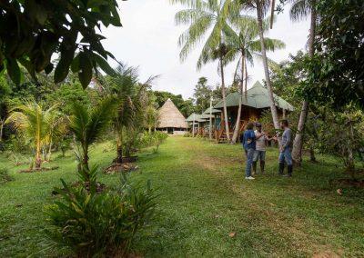 Amazon-Tupana-Aru-U-Nature-Reserve-14