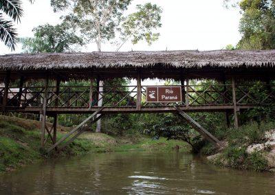 Amazon-Tupana-Aru-U-Nature-Reserve-2