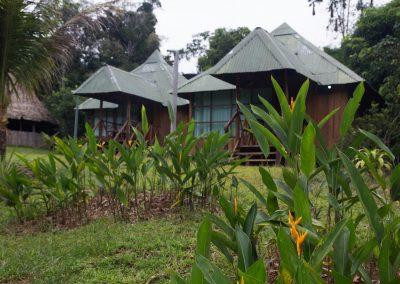 Amazon-Tupana-Aru-U-Nature-Reserve-7