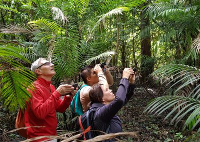 Tourists-exploring-the-Amazon-jungle-in-search-of-birds-2