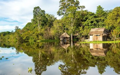 The best season of the year to travel to the Amazon